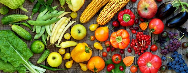 organic food lowers oestrogen dominance - diagnost